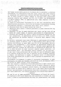 Perizia Lino integrale_Pagina_08