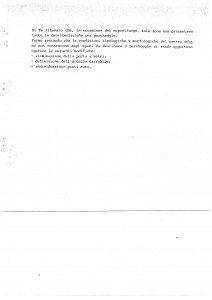 Perizia Lino integrale_Pagina_10